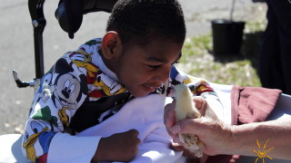 Photo: BrightStart patient with baby chick.